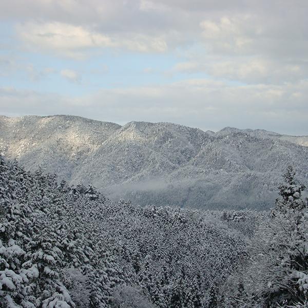 蛇谷ヶ峰雪景色